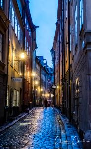 Stockholm-04.01.2018-Claudia_Chiodi-4